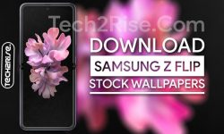 Download Samsung Galaxy Z Flip Stock Wallpapers [FHD+ Walls]